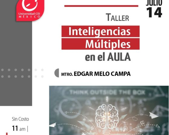 Taller Inteligencias Múltiples en el aula