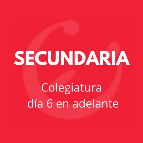 CEI SECUNDARIA COLEGIATURA 6-31